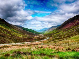 Schottland_grün_wiese_landschaft