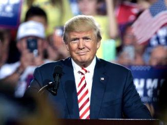 donald trump_trump_usa_präsident_us-präsident_amerika