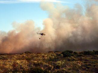 busch_buschbrand_feuer_lodern_flammen_helikopter_wald_drama_katastrophe