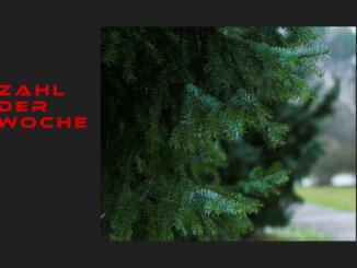 collage_weihnachtsbaum_neu_zahl_der_woche_zahlderwoche