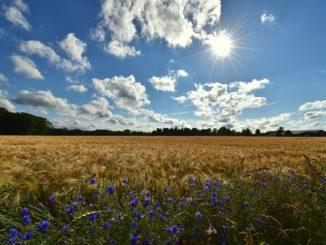 natur_sonne_blauer himmel_wolken_landscape