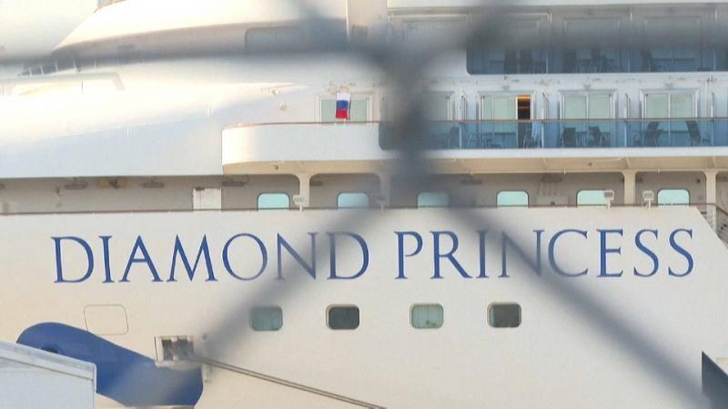 diamond_princess_hinter_gittern