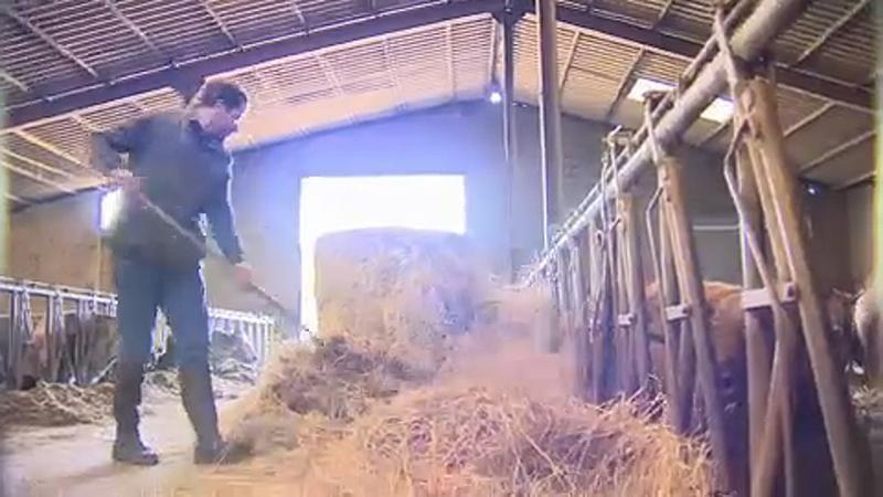 eu haushalt_bauern_kürzungen_landwirtschaft_agrarpolitik