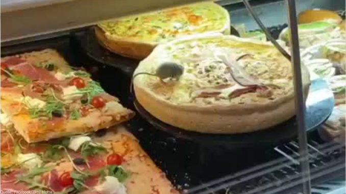 maus_pizza_restaurant_backwaren_essen_tier_eklig_verstörend