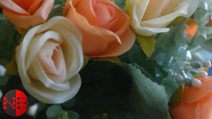 valentinstag_rosen_blumen_preise_teuer_romantisch_geschenke_abzocke