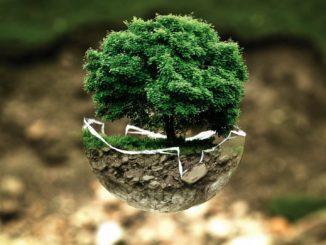 Symbolbild: Umweltschutz