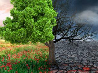 Klimawandel Hauptverursacher von Naturkatastrophen